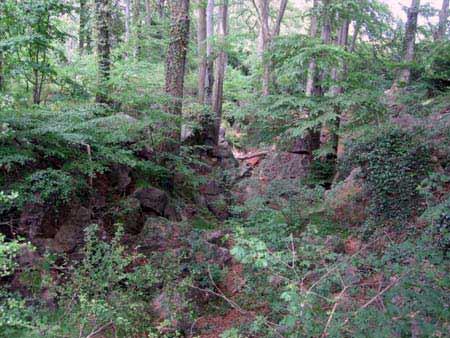 Felsenmeer Hemer - Wald Felsen
