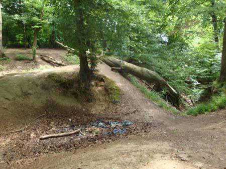 Dolinen und hügeliger Wald
