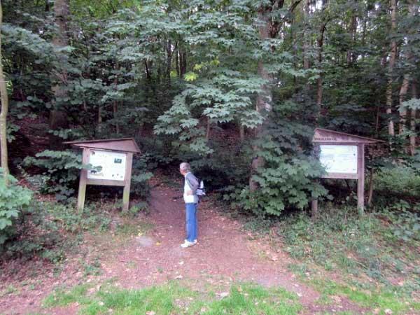 Einstieg Waldlehrpfad Aabachtal