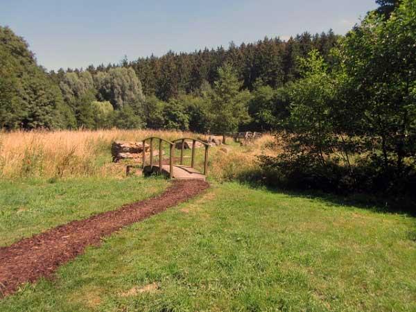 Barfußpfad durch Sumpfwiesen