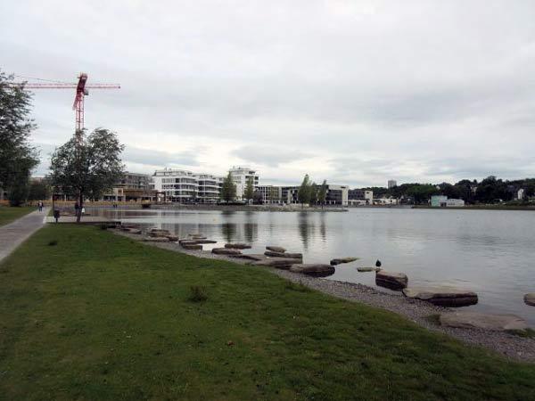 Phoenixsee Ufer