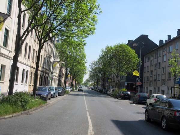 Die Brackeler Straße ist voller Fahnen.
