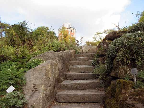 Botanischer Garten mit Elisenturm