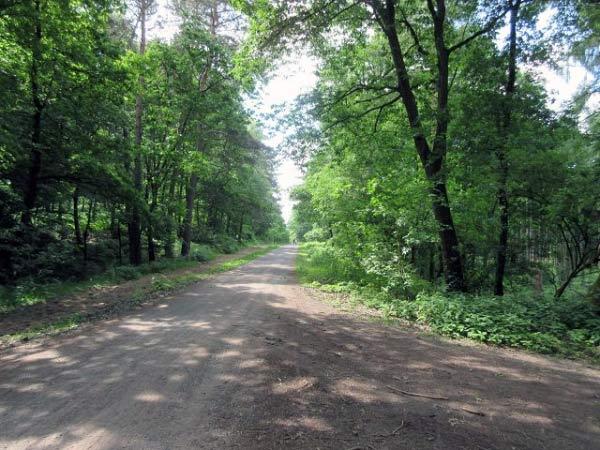 Haard Wald-Wanderung