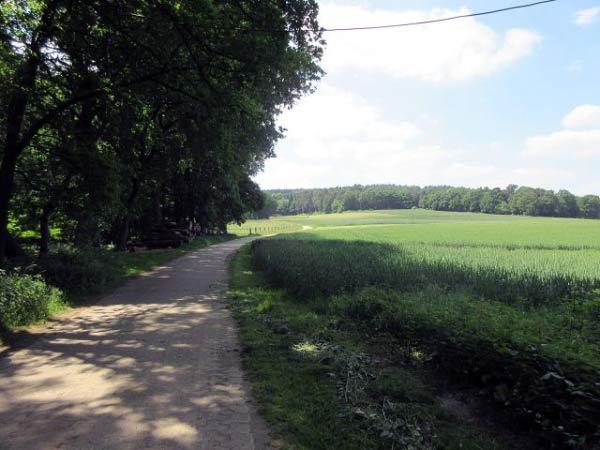 Wanderweg Flaesheim