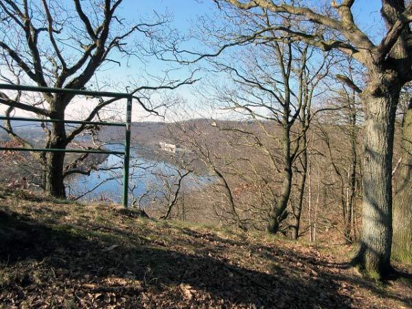 Klusenberg Wald