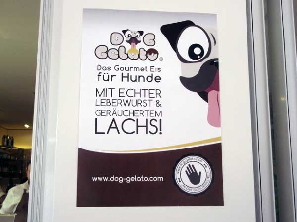 Eis für Hunde