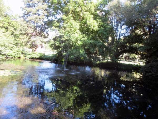 Teich mit Springbrunnen